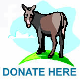 Tamar Valley Donkey Park Donate here